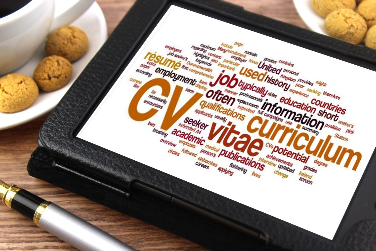 starting job cv skills experience